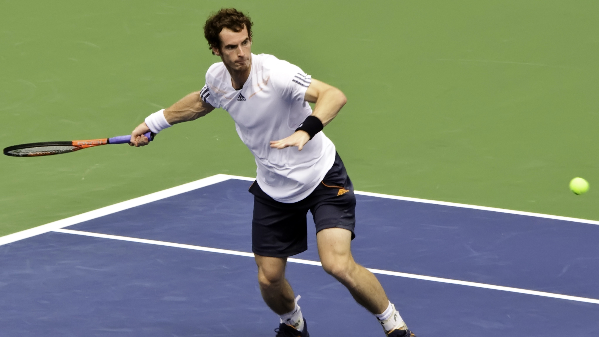 andy murray recovery